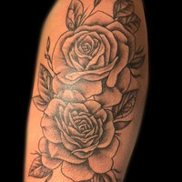 Roses Tattoo - Lauren Miller